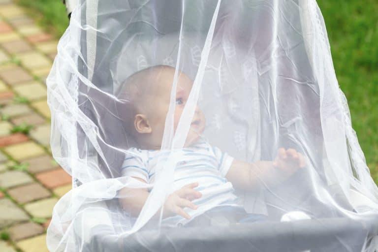 Bebé con mosquitera