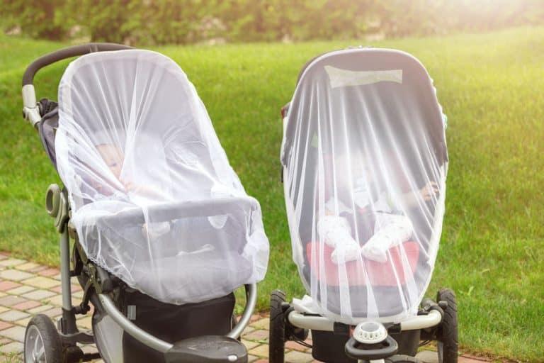 Bebés con mosquiteras