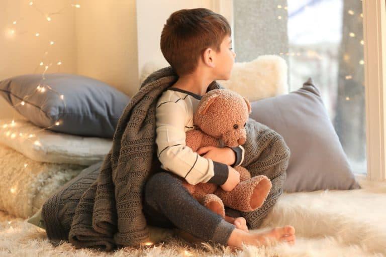 Un niño con un peluche