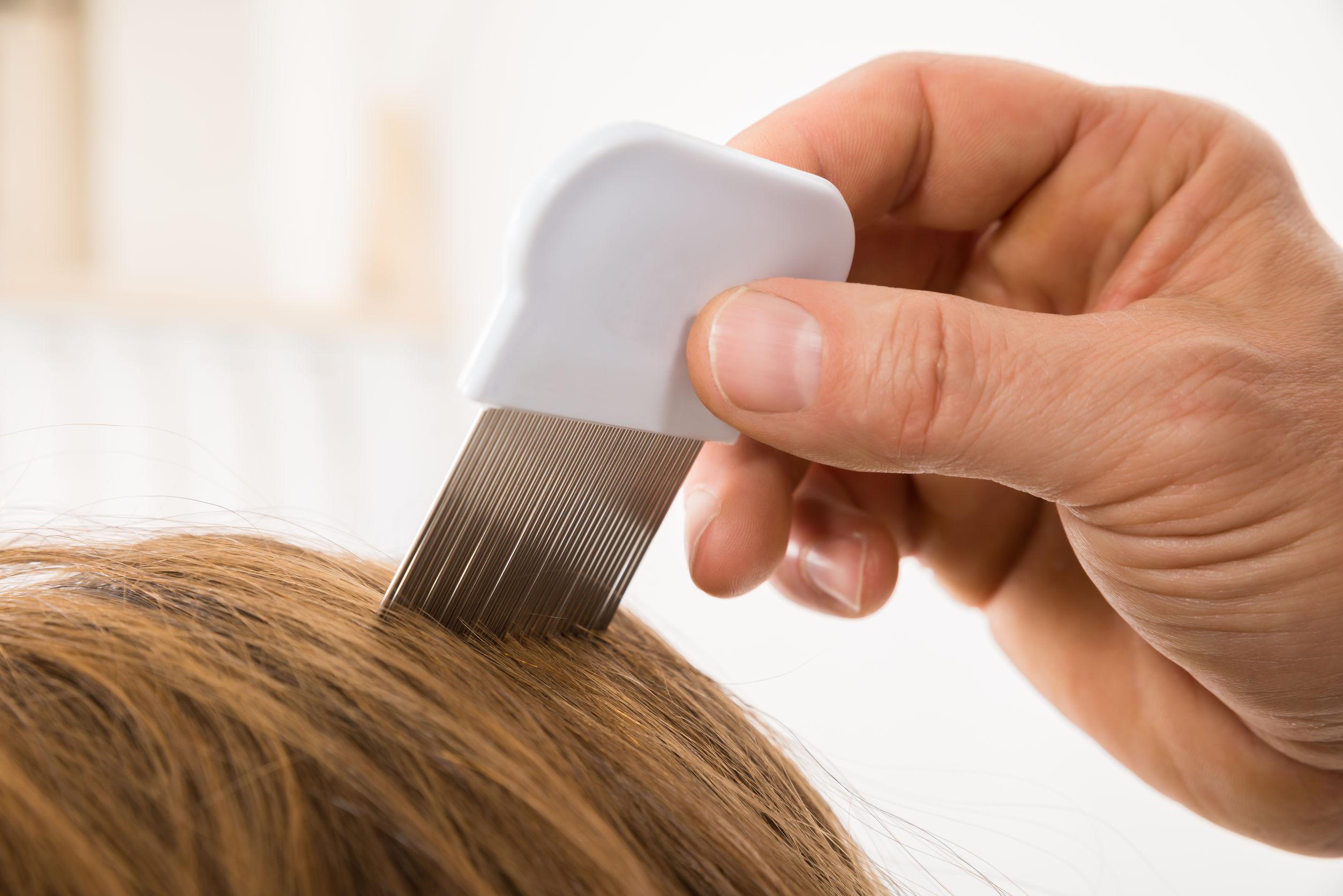 Close-up de la mano de la persona con peine para piojos en el cabello del paciente