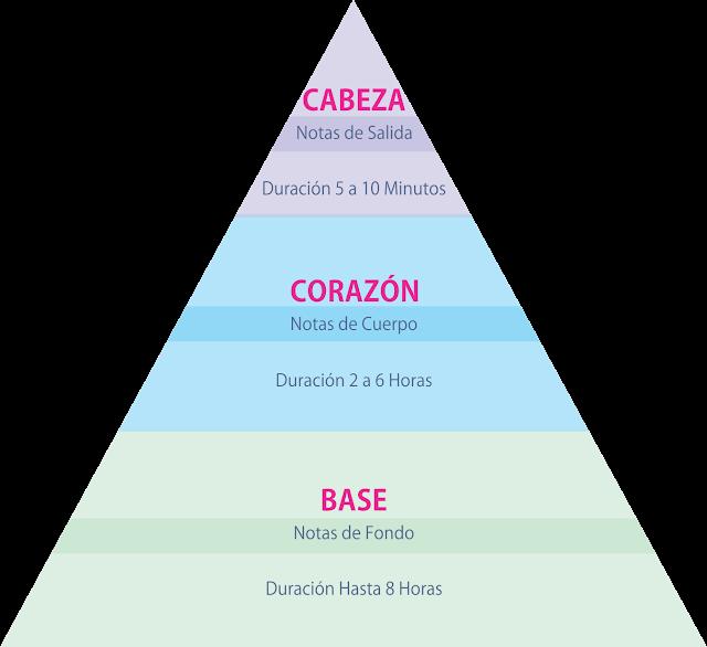 Pirámide olfativa