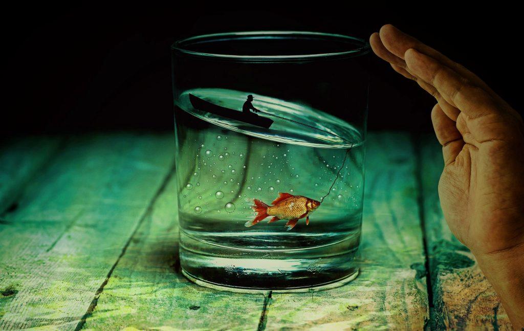 agua dentro de vaso de cristal