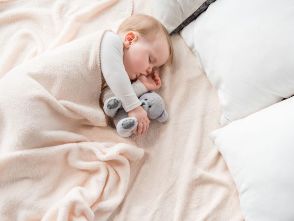 Top view of peaceful baby lying at sheets and sucking her finger. She is sleeping with teddy bear in an embrace