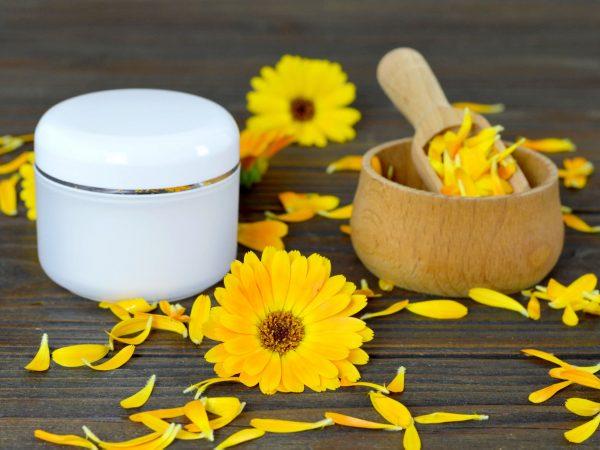 Herbal cosmetic calendula cream on wooden background