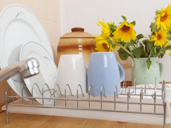 Dish Drying Rack on the kitchen countertop
